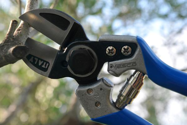 A2 - Double-cut pruning shears (size S)