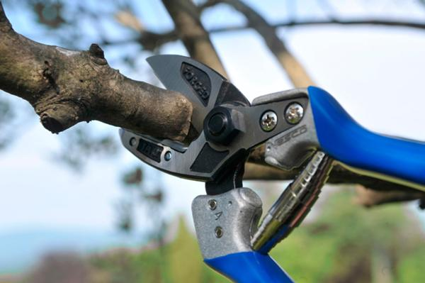 A4 - Anvil pruning shears (size S)